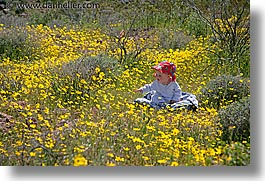 babies, boys, california, childrens, death valley, horizontal, jacks, national parks, people, west coast, western usa, wildflowers, photograph