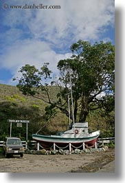 boats, california, gorda, trees, vertical, west coast, western usa, photograph