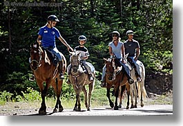 california, families, horizontal, horses, kings canyon, west coast, western usa, photograph