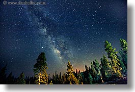 california, galaxy, horizontal, kings canyon, long exposure, milky way, nite, stars, trees, west coast, western usa, photograph