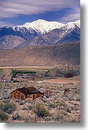 california, houses, lee vining, mountains, vertical, west coast, western usa, photograph