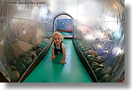 california, discovery museum, fisheye lens, horizontal, marin, marin county, north bay, northern california, san francisco bay area, toddlers, tunnel, water, west coast, western usa, photograph