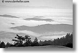 black and white, california, fog, foggy, hills, horizontal, marin, marin county, north bay, northern california, san francisco bay area, west coast, western usa, photograph