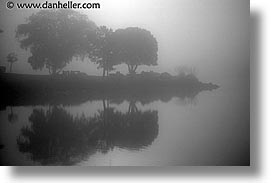 black and white, california, corte, fog, greenbrae, horizontal, madera, marin, marin county, north bay, northern california, rivers, san francisco bay area, trees, west coast, western usa, photograph
