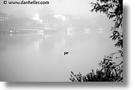 california, ducks, foggy, greenbrae, horizontal, marin, marin county, north bay, northern california, rivers, san francisco bay area, west coast, western usa, photograph