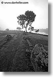black and white, california, greenbrae, marin, marin county, north bay, northern california, paths, rivers, san francisco bay area, vertical, west coast, western usa, photograph