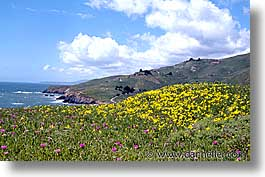 california, headlands, heads, horizontal, marin, marin county, marin headlands, north bay, northern california, san francisco bay area, west coast, western usa, photograph