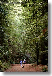 california, hike, hikers, hoo koo ee koo, marin, marin county, north bay, northern california, san francisco bay area, trails, vertical, west coast, western usa, photograph