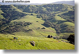 california, dogs, hikers, hills, horizontal, lucas valley, marin, marin county, north bay, northern california, san francisco bay area, west coast, western usa, photograph