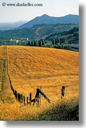 california, fences, marin, marin county, mount tamalpais, mountains, mt tam, north bay, northern california, scenics, vertical, west coast, western usa, photograph