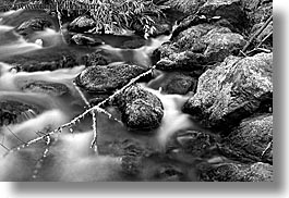 black and white, california, horizontal, long exposure, marin, marin county, mossy, muir woods, north bay, northern california, stones, water, west coast, western usa, photograph