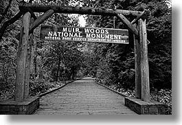 black and white, california, entry, forests, horizontal, marin, marin county, muir, muir woods, nature, north bay, northern california, paths, plants, signs, slow exposure, trees, west coast, western usa, woods, photograph