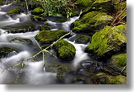 california, colors, green, horizontal, long exposure, lush, marin, marin county, mossy, motion blur, muir woods, nature, north bay, northern california, stones, water, west coast, western usa, photograph