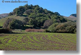 california, farm, hills, horizontal, landscapes, marin, marin county, nature, north bay, northern california, novato, scenics, stafford lake park, west coast, western usa, photograph
