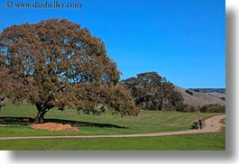 california, hikers, hills, horizontal, landscapes, marin, marin county, nature, north bay, northern california, novato, scenics, stafford lake park, trees, west coast, western usa, photograph