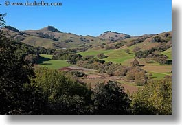 california, hills, horizontal, landscapes, marin, marin county, nature, north bay, northern california, novato, scenics, stafford lake park, trees, west coast, western usa, photograph