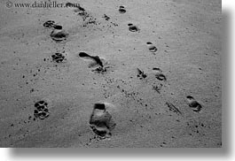 beaches, black and white, california, footprints, horizontal, marin, marin county, materials, north bay, northern california, sand, west coast, western usa, photograph