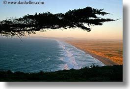 beaches, california, coastline, horizontal, long, marin, marin county, north bay, northern california, silhouettes, trees, west coast, western usa, photograph