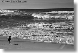 beaches, black and white, california, horizontal, jack jill, jacks, marin, marin county, north bay, northern california, ocean, people, west coast, western usa, photograph