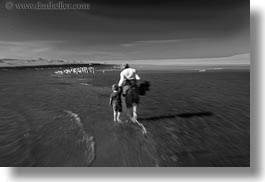 beaches, black and white, california, horizontal, jack and jill, jack jill, marin, marin county, north bay, northern california, people, seagulls, west coast, western usa, photograph