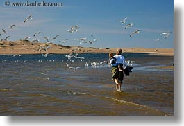 beaches, california, horizontal, jack and jill, jack jill, marin, marin county, north bay, northern california, people, seagulls, west coast, western usa, photograph