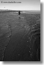 beaches, black and white, california, jack and jill, jack jill, marin, marin county, north bay, northern california, people, seagulls, vertical, west coast, western usa, photograph