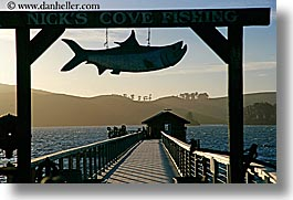 bay, california, cove, fish, horizontal, marin, marin county, nature, nicks, nicks cove, north bay, northern california, piers, signs, tomales bay, water, west coast, western usa, photograph