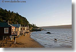 bay, beaches, california, cove, horizontal, hotels, marin, marin county, nature, nicks, nicks cove, north bay, northern california, tomales bay, water, west coast, western usa, photograph