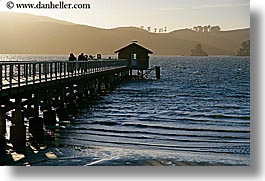 bay, california, cove, horizontal, marin, marin county, nature, nicks, nicks cove, north bay, northern california, piers, tomales bay, water, west coast, western usa, photograph
