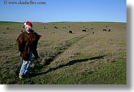 animals, california, christmas, colors, cows, events, green, hats, horizontal, jills, marin, marin county, north bay, northern california, people, santa, tomales bay, west coast, western usa, womens, photograph