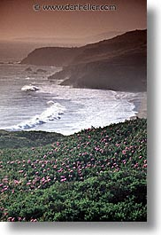 beaches, california, marin, marin county, north bay, northern california, rodeo, rodeo beach, san francisco bay area, vertical, west coast, western usa, photograph