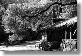 black and white, branches, california, horizontal, huts, marin, marin county, north bay, northern california, phoenix lake park, ross, stones, west coast, western usa, woods, photograph