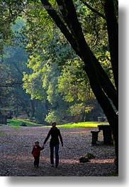 boys, california, childrens, colors, forests, green, heather, lush, marin, marin county, mothers, nature, north bay, northern california, people, phoenix lake park, plants, ross, russel, scenics, silhouettes, trees, vertical, west coast, western usa, womens, photograph