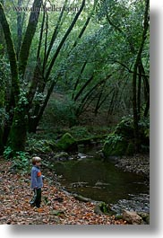 boys, california, childrens, colors, forests, green, jacks, lush, marin, marin county, nature, north bay, northern california, people, phoenix lake park, plants, rivers, ross, scenics, trees, vertical, west coast, western usa, photograph