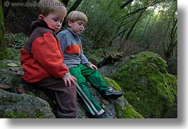 boys, california, childrens, colors, forests, green, horizontal, jacks, lush, marin, marin county, nature, north bay, northern california, people, phoenix lake park, plants, ross, russel, scenics, trees, west coast, western usa, photograph