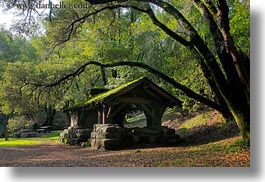 arching, branches, buildings, california, colors, forests, green, horizontal, huts, lush, marin, marin county, nature, north bay, northern california, phoenix lake park, plants, ross, scenics, stones, structures, trees, west coast, western usa, woods, photograph