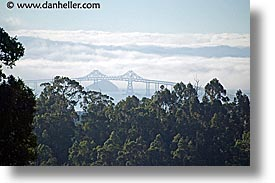 bridge, california, fog, horizontal, marin, marin county, north bay, northern california, san francisco bay area, san rafael, west coast, western usa, photograph