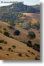 anselmo, california, landscapes, marin, marin county, north bay, northern california, san anselmo, san francisco bay area, vertical, west coast, western usa, photograph
