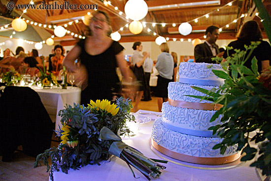 weddingcakenlights1jpg
