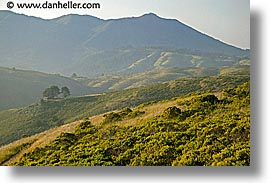 california, cottage, green, green gulch, gulch, hills, hope cottage, horizontal, marin, marin county, marin headlands, mount tamalpais, mountains, north bay, northern california, san francisco bay area, tennessee, west coast, western usa, photograph