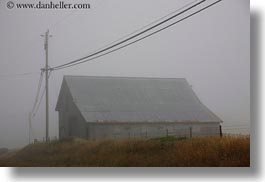 barn, buildings, california, fog, horizontal, mendocino, nature, telephone wires, telephones, west coast, western usa, wires, photograph