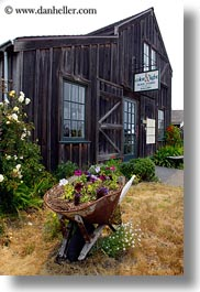 barn, barrow, buildings, california, flowers, mendocino, vertical, west coast, western usa, wheels, photograph