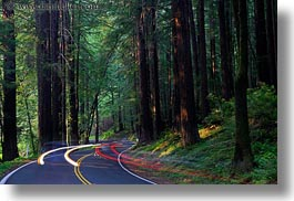 california, car headlights, cars, colors, forests, green, headlights, horizontal, light streaks, materials, mendocino, motion blur, nature, plants, redwood trees, redwoods, slow exposure, streets, trees, west coast, western usa, woods, photograph