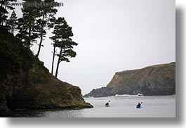 california, coastline, horizontal, kayaks, lagoon, mendocino, nature, plants, trees, water, west coast, western usa, photograph