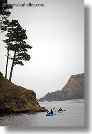 california, coastline, kayaks, lagoon, mendocino, nature, plants, trees, vertical, water, west coast, western usa, photograph