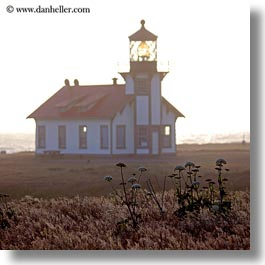 buildings, cabrillo, california, days, fields, fog, haze, lighthouses, mendocino, square format, structures, west coast, western usa, photograph