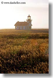 buildings, cabrillo, california, days, fields, fog, haze, lighthouses, mendocino, structures, vertical, west coast, western usa, photograph