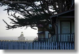 branches, buildings, california, days, fences, haze, horizontal, houses, lighthouses, mendocino, nature, plants, structures, trees, west coast, western usa, photograph
