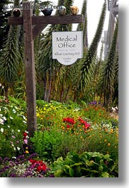 california, flowers, medical, mendocino, office, signs, vertical, west coast, western usa, photograph