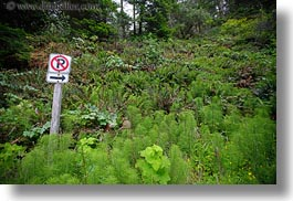 california, emotions, horizontal, humor, mendocino, no parking, plants, signs, west coast, western usa, photograph